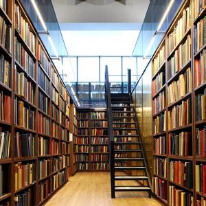 Библиотеки Медыни