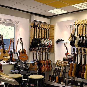 Музыкальные магазины Медыни