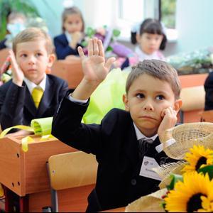 Школы Медыни